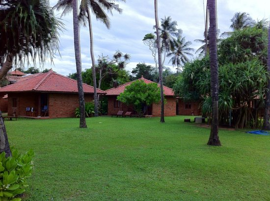 Ranweli Holiday Village: view of our bungalow (107)