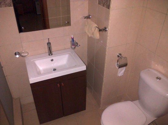 Arirang Hotel: toilet/shower room inside the bedroom