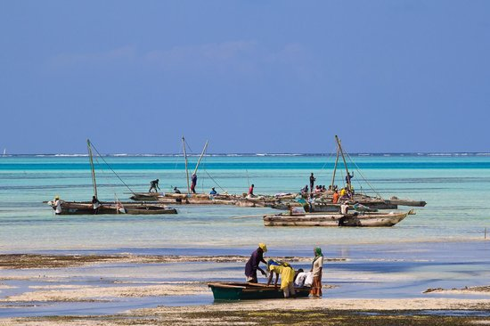Mamamapambo Boutique Hotel: Local fishermen on Jambiani beach