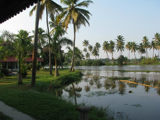 Manor Backwater Resort: Backwater view from room