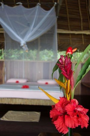 Al Natural Resort: Elegant natural decoration for the bungalows!