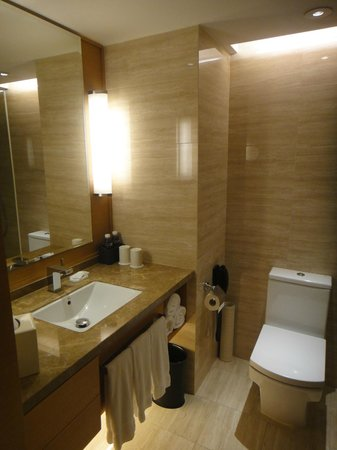 Renaissance Hong Kong Harbour View Hotel: Bathroom