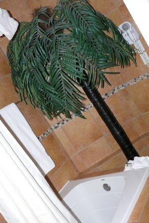 Hotel Kutuma: Palma in Bagno