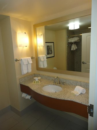 Hilton Garden Inn Portsmouth Downtown: Pretty standard bathroom