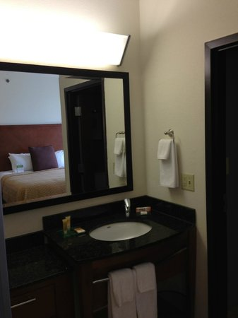 Hyatt Place Atlanta Airport North: Vanity
