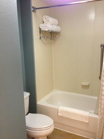 Hyatt Place Atlanta Airport North: Bathroom