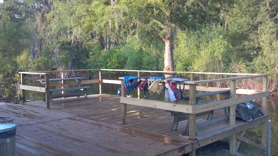 Champagne's Cajun Swamp Tours: ChampagnesCajunSwamptours has back deck's on water,for seating,and loading area for tour boat's.