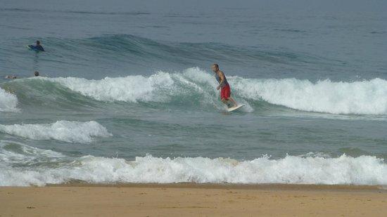 Neela's Guesthouse & Beach Restaurant: Surf