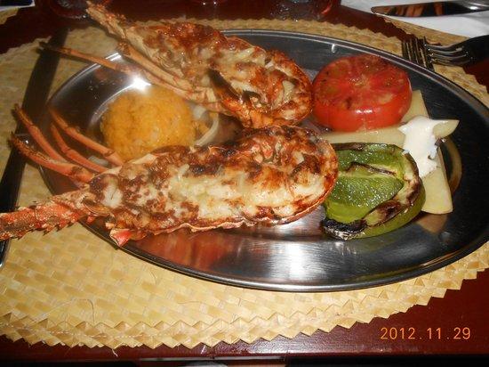 Melia Cayo Guillermo : yummy lobster