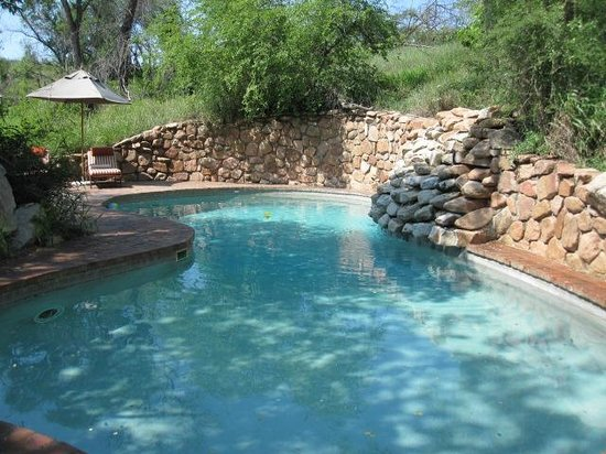 Sabi Sabi Little Bush Camp: nice pool area
