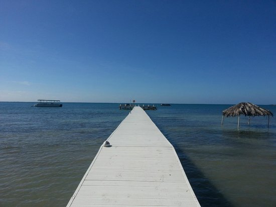 Copamarina Beach Resort & Spa: The Dock