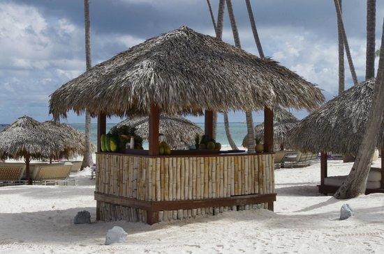 Paradisus Palma Real Golf & Spa Resort: Bar sur la plage