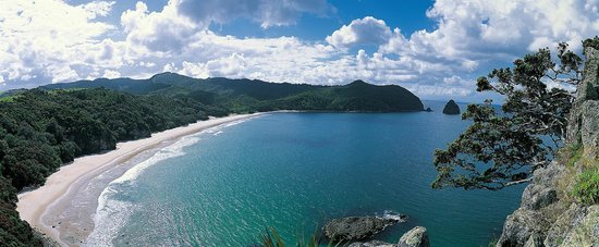 Coromandel TOP 10 Holiday Park: Coromandel TOP 10- 15 minutes drive to New Chums Beach