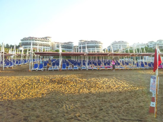 Alba Queen Hotel: view of the hotel and beach (at the beach)