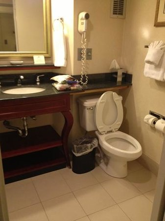 Crowne Plaza Richmond Downtown: I like the vanity. not a fan of the hairdryer nor the non movable make up mirror