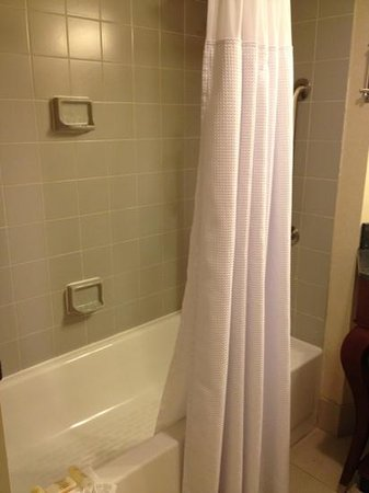 Crowne Plaza Richmond Downtown: ugly tile and the grout is stating to become dark. however shower head is great