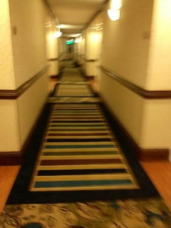 Delta Hotels by Marriott Richmond Downtown: the guest room corridor had hardwood with carpet in the middle. nice taste