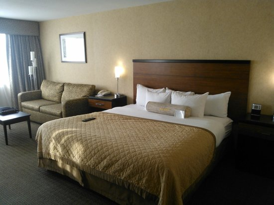 Wyndham Garden Philadelphia Airport: King Room