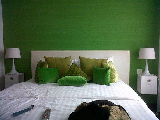 Hotel Esperance: Camera verde