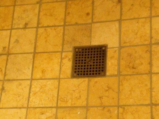 Hyatt At Olive 8: Industrial drain in fancy shower... 