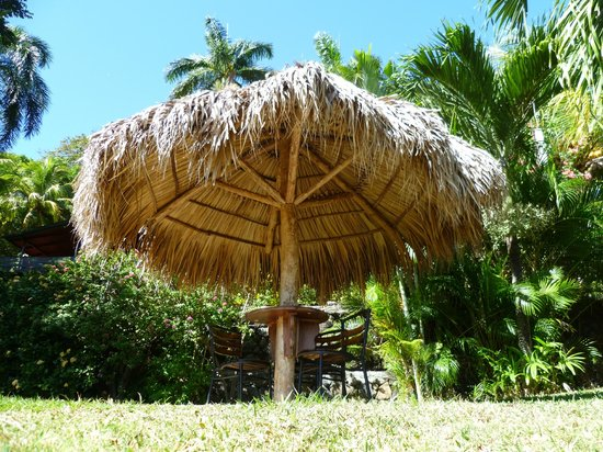 The Monkey Hut: The Cabanas...