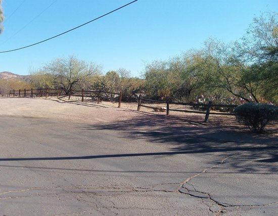 Super 8 Wickenburg AZ: Drive leading to rear parking