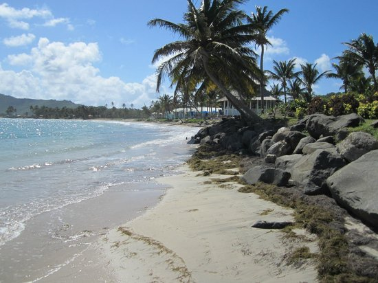 Coconut Bay Beach Resort & Spa: Beach