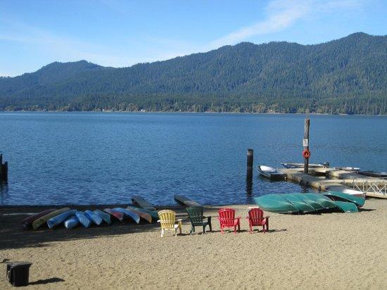 Lake Quinault Lodge : Beach view of the lake