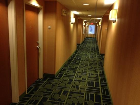 Fairfield Inn & Suites Wilkes-Barre Scranton: hallway
