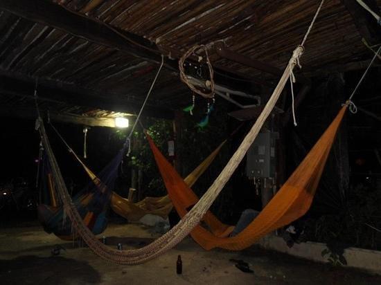 Lobo Inn: Muy agusto la zona de amacas.