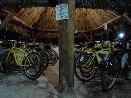 Lobo Inn: Estacionamiento de bicicletas