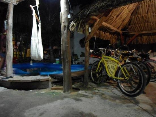 Lobo Inn: vista nocturna de la alberca