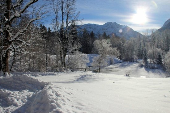Gray Line München: Snowy pond in the sun on the walk to Linderhof