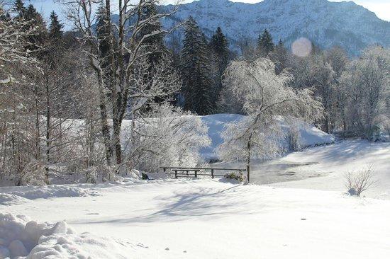 Gray Line München: Snowy pond on the walk to Linderhof