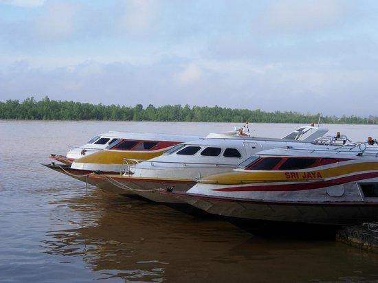 Kingwood Hotel: Long boat ferry