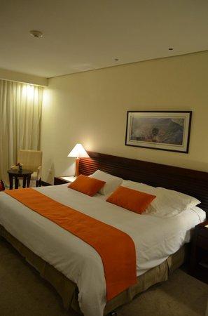 Eurobuilding Hotel & Suites Guayana: Camera #117