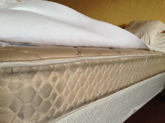 Motel 6 Bridgeview: filthy mattress.