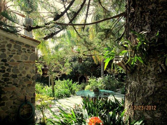 Hacienda del Lago Boutique Hotel: Courtyard