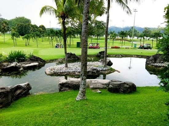 Orchid Country Club: the scenery outside the room