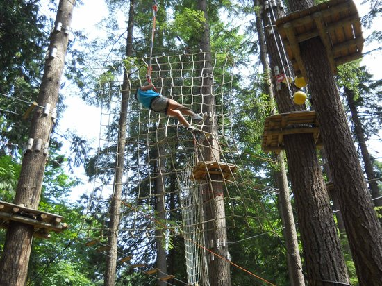 WildPlay Element Parks Maple Ridge