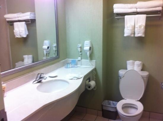 Hampton Inn & Suites by Hilton San Jose Airport: bathroom