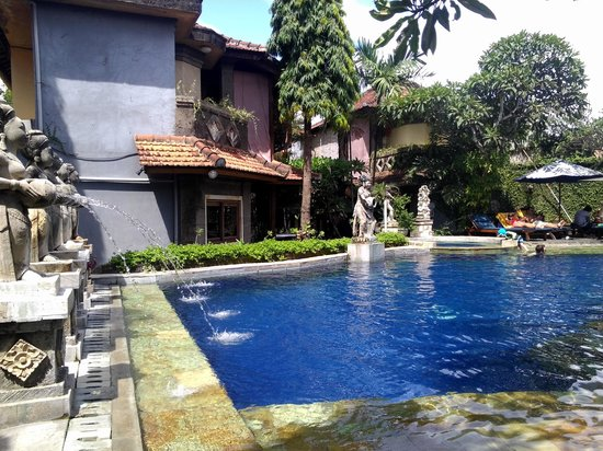 Putu Bali Villa and Spa: pool view