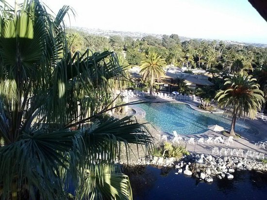 Paradise Point Resort & Spa: Pool and grounds from the tower.