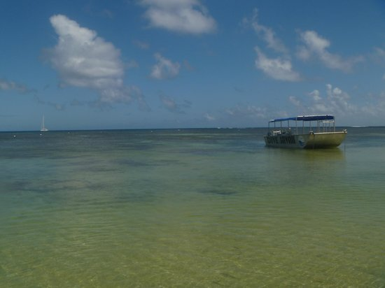 Savaii Lagoon Resort: crystal clear lagoon