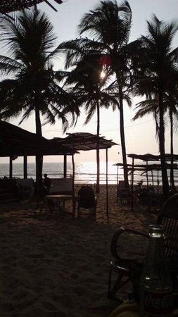 C. Roque Resort: The Lounging area