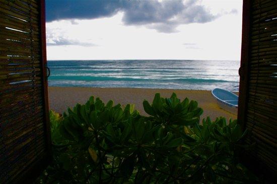 Hotel CalaLuna Tulum: Vue du petit déjeuner
