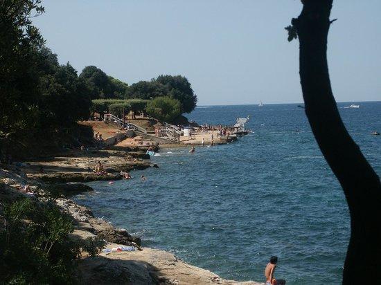 Valamar Tamaris Villas: Costa della penisola Lanterna, Istria - Croazia