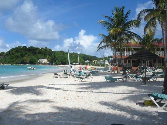 Pineapple Beach Club Antigua - All Inclusive: Beach