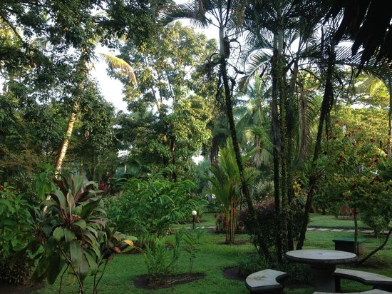 Turtle Beach Lodge: tortuguero