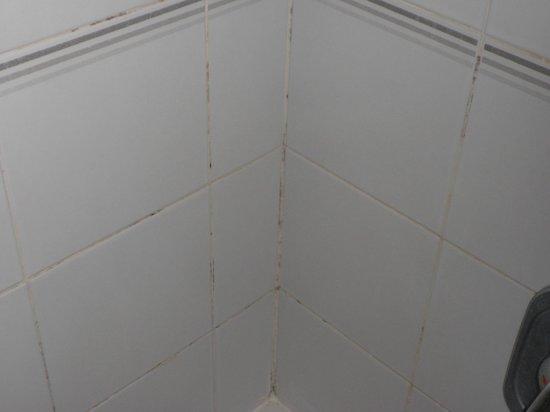 San Pawl Hotel: Bath tiles